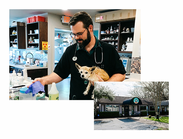 Austin Veterinarian Rob Pierrat